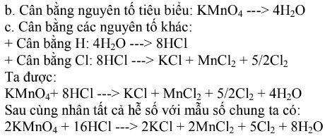 pp cân bằng theo nguyên tố tiêu biểu