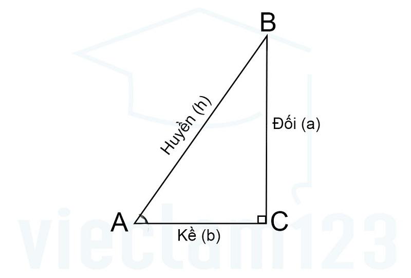 Tam giác vuông và công thức lượng giác