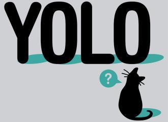 YOLO là gì? Phong cách sống của giới trẻ hiện nay liệu có tốt?
